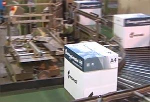 Самый известный бренд СЛПК – офисная бумага «Снегурочка»