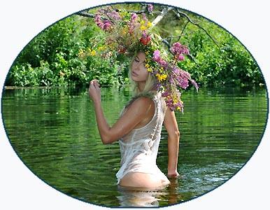 Марья моль цветок